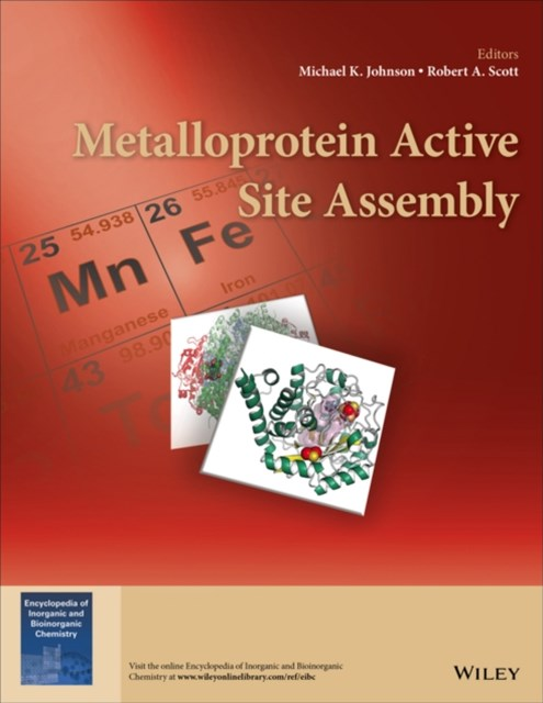 (ebook) Metalloprotein Active Site Assembly