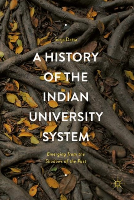 History of the Indian University System