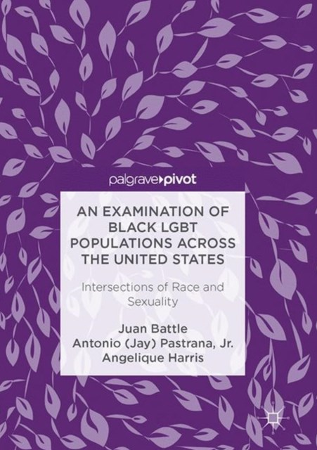 Examination of Black LGBT Populations Across the United States