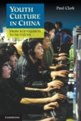 (ebook) Youth Culture in China