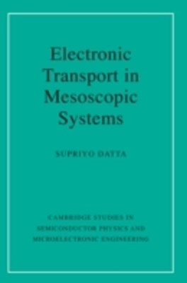 (ebook) Electronic Transport in Mesoscopic Systems