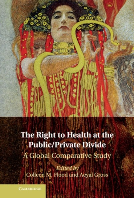 Right to Health at the Public/Private Divide