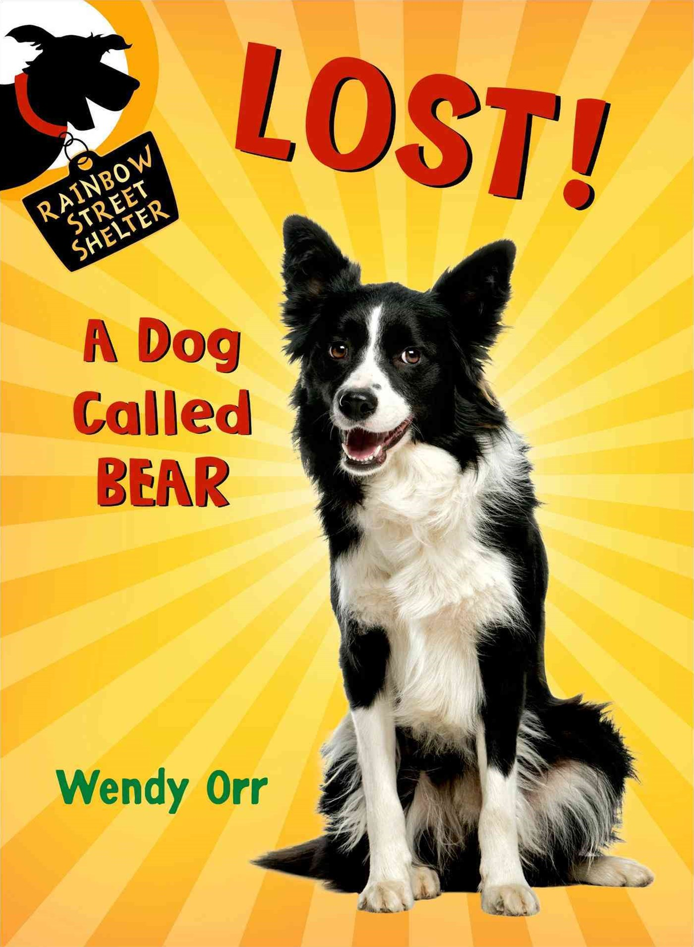 Lost! - A Dog Called Bear