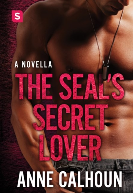 SEAL's Secret Lover