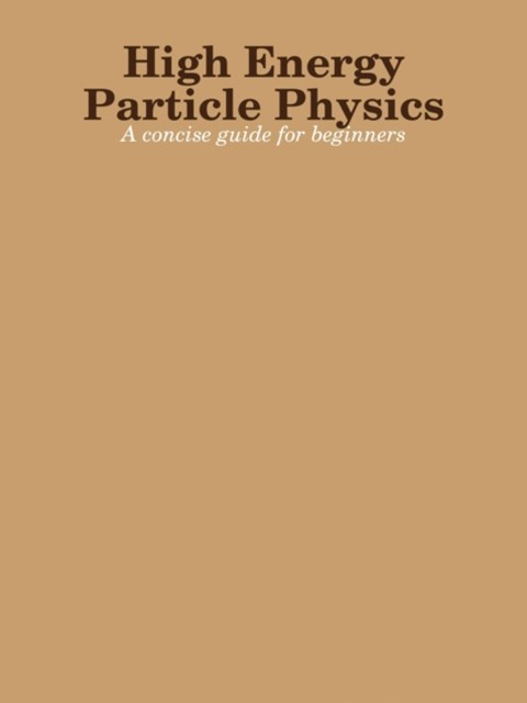 High Energy Particle Physics: A Concise Guide For Beginners
