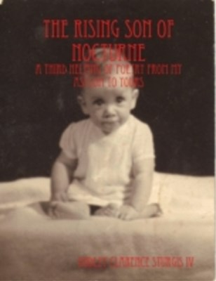 Rising Son of Nocturne: A Third Helping of Poetry from My Asylum to Yours
