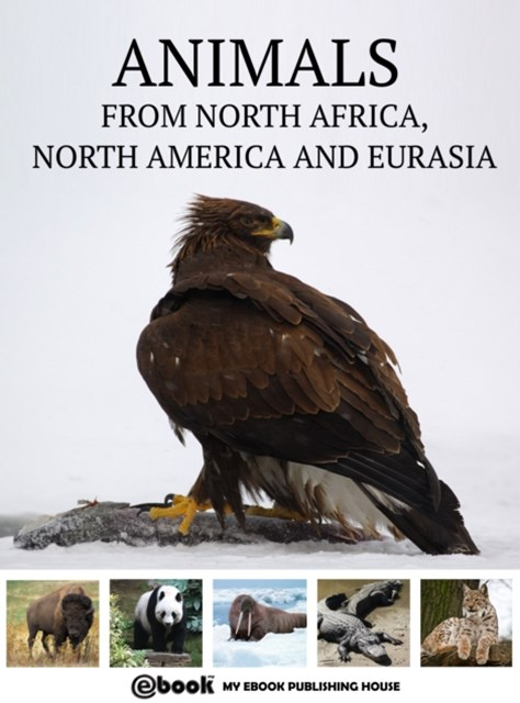 (ebook) Animals from North Africa, North America and Eurasia
