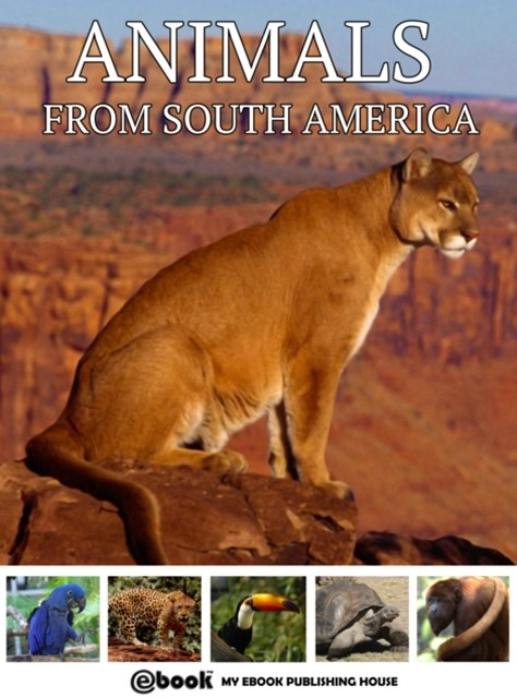 (ebook) Animals from South America