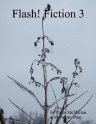 (ebook) Flash! Fiction 3