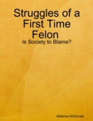 Struggles of a First Time Felon : Is Society to Blame?