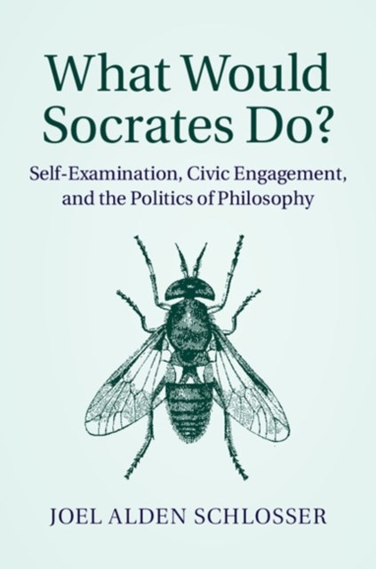 (ebook) What Would Socrates Do?