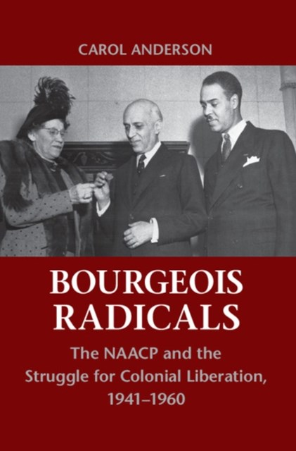 (ebook) Bourgeois Radicals
