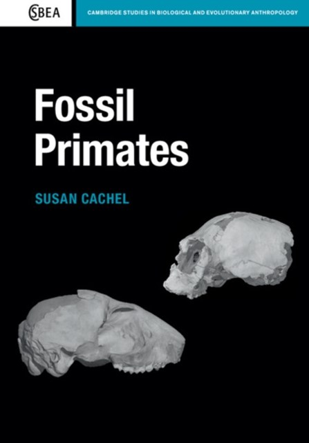 (ebook) Fossil Primates