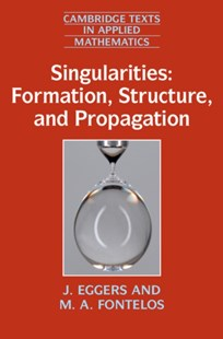 (ebook) Singularities: Formation, Structure, and Propagation - Science & Technology Mathematics