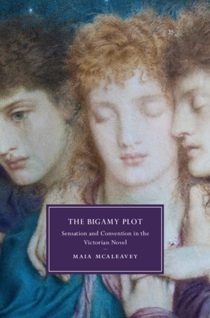 (ebook) Bigamy Plot