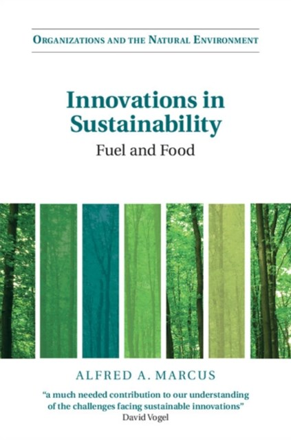(ebook) Innovations in Sustainability