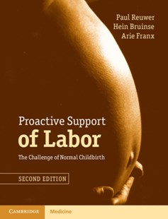 (ebook) Proactive Support of Labor - Family & Relationships Pregnancy & Childbirth
