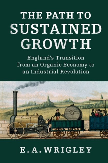 (ebook) Path to Sustained Growth