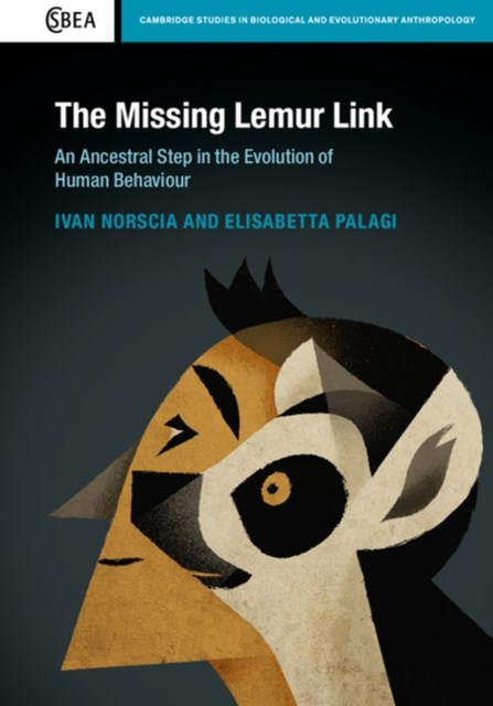 Missing Lemur Link
