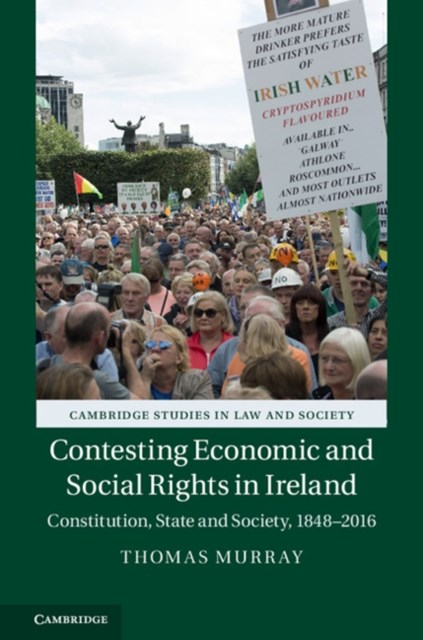 (ebook) Contesting Economic and Social Rights in Ireland
