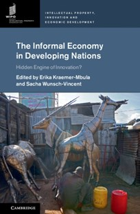 (ebook) Informal Economy in Developing Nations - Business & Finance Ecommerce