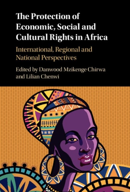 Protection of Economic, Social and Cultural Rights in Africa