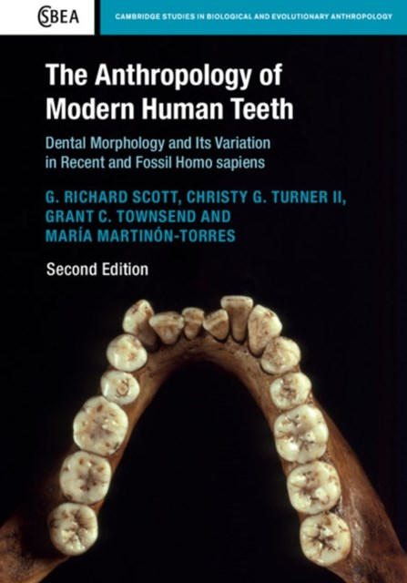 (ebook) Anthropology of Modern Human Teeth