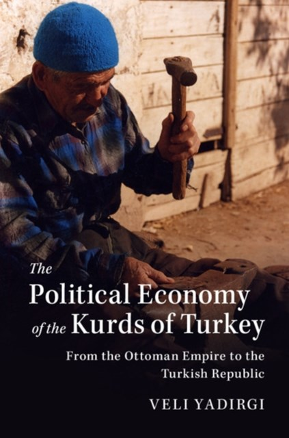 (ebook) Political Economy of the Kurds of Turkey