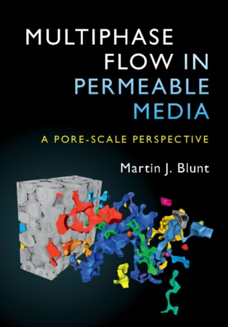 Multiphase Flow in Permeable Media