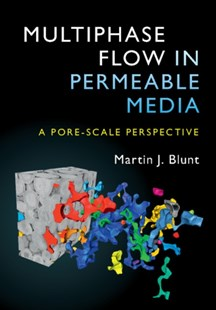 (ebook) Multiphase Flow in Permeable Media - Science & Technology Chemistry
