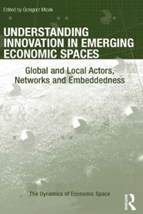 (ebook) Understanding Innovation in Emerging Economic Spaces - Reference