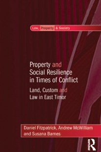 (ebook) Property and Social Resilience in Times of Conflict - Politics Political Issues