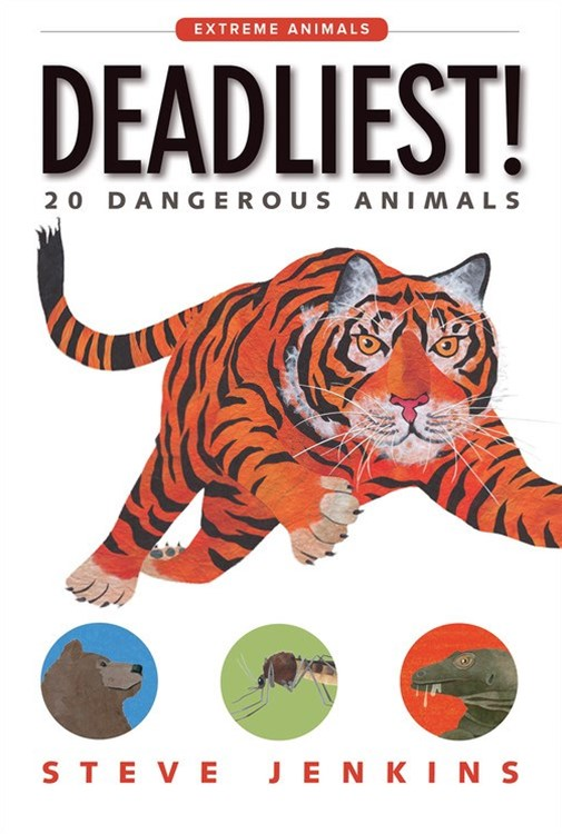 Deadliest! 20 Dangerous Animals