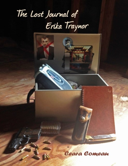 Lost Journal of Erika Traynor