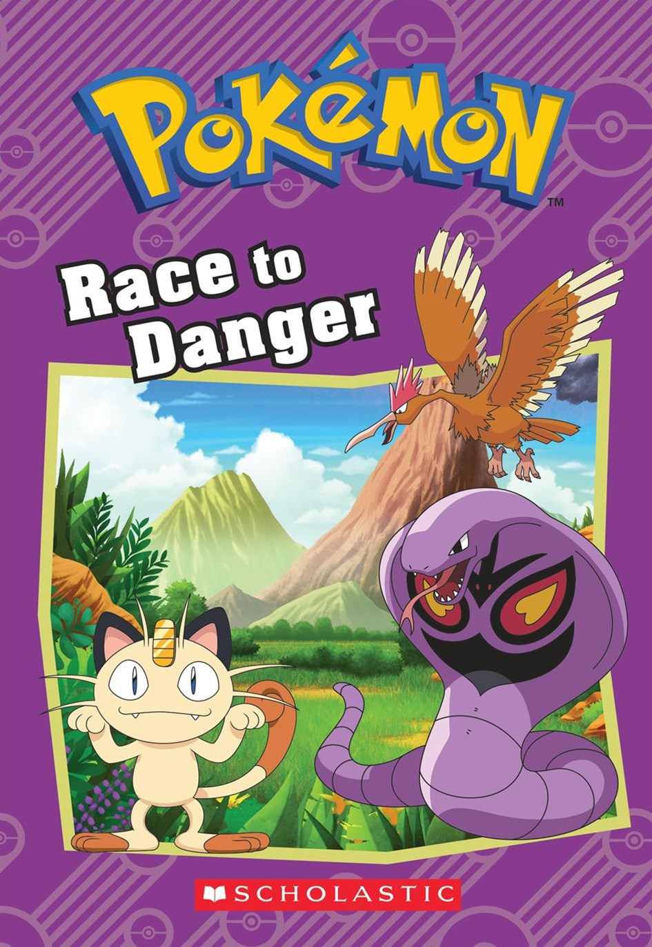 Race to Danger (Pok+¬mon: Chapter Book)