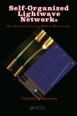 Self-Organized Lightwave Networks