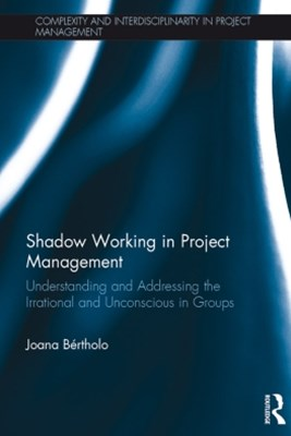 Shadow Working in Project Management