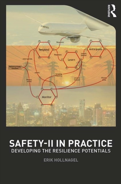 Safety-II in Practice