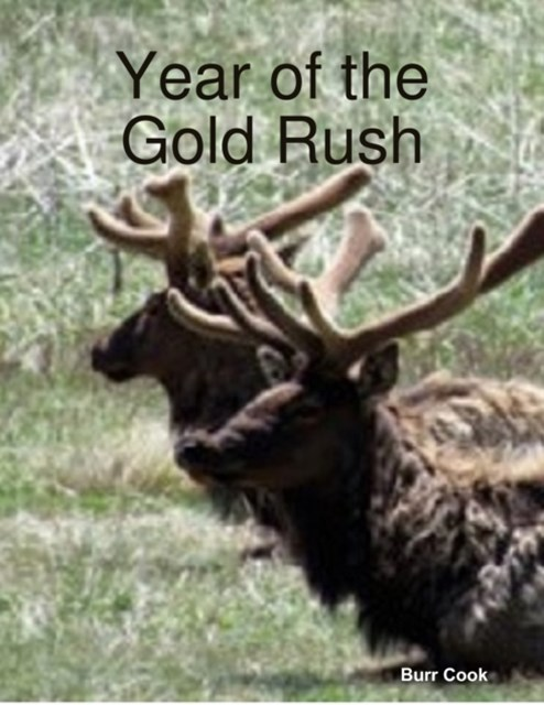 (ebook) Year of the Gold Rush