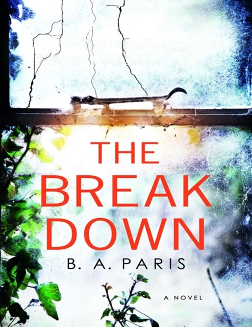 Breakdown: A Novel