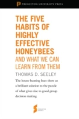 Five Habits of Highly Effective Honeybees (and What We Can Learn from Them)