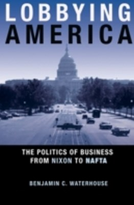 (ebook) Lobbying America