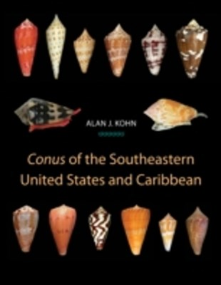 (ebook) Conus of the Southeastern United States and Caribbean