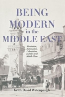 (ebook) Being Modern in the Middle East