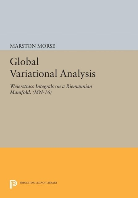 Global Variational Analysis