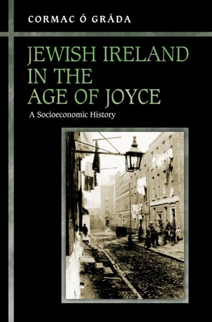 (ebook) Jewish Ireland in the Age of Joyce