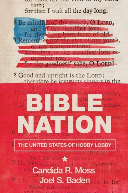 (ebook) Bible Nation