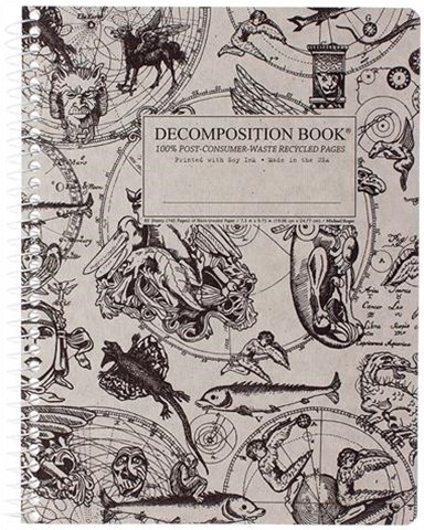 Gargoyles Decompositon Book - Blank