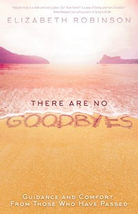 There Are No Goodbyes: Guidance and Comfort From Those Who Have Passed by Elizabeth Robinson (9781401950798) - PaperBack - Biographies General Biographies