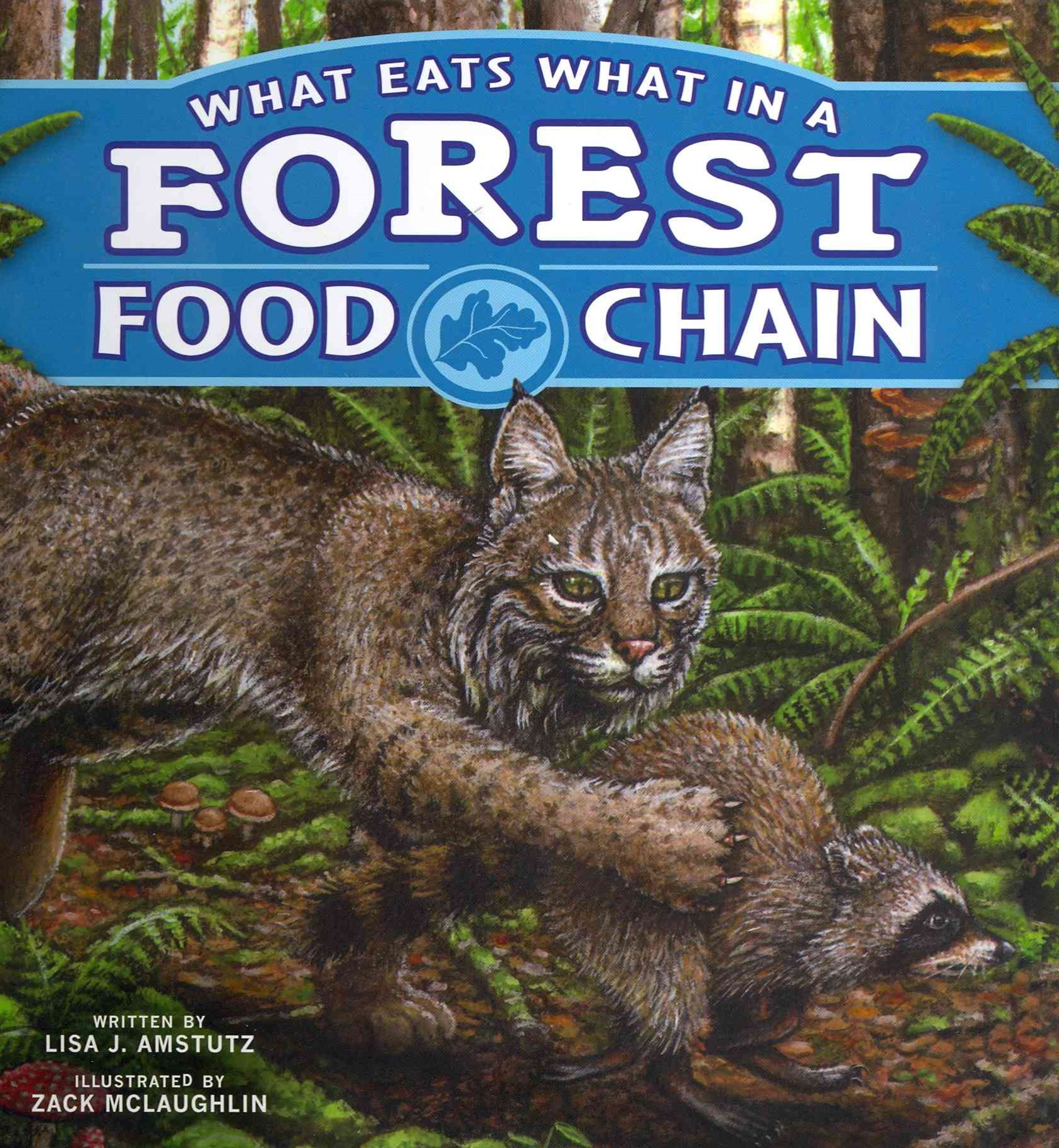 What Eats What in a Forest Food Chain